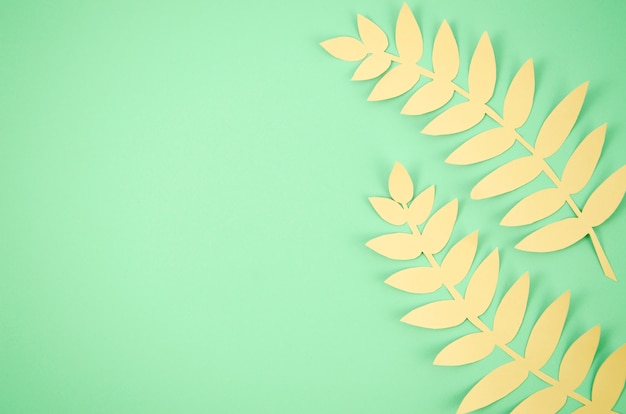 Cute long leaves with green copy space background