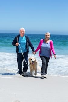 Cute mature couple walking their dog