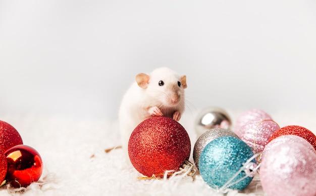 새해 배경에 귀여운 마우스