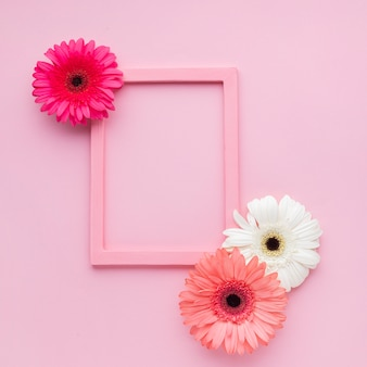 Cute pink frames with flowers and copy space