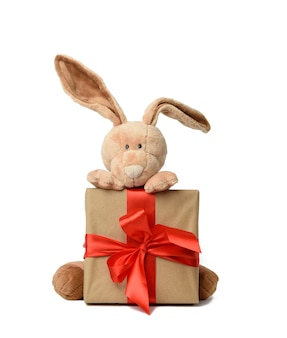 Cute plush rabbit holding a gift box tied with a red silk ribbon, white background