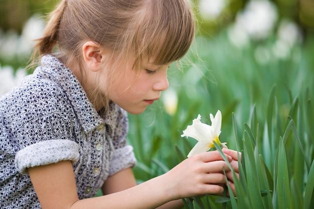 Милая довольно вдумчивая девочка ребенка на открытом воздухе с белым нарциссом в солнечное лето или весенний день на размытом зеленом