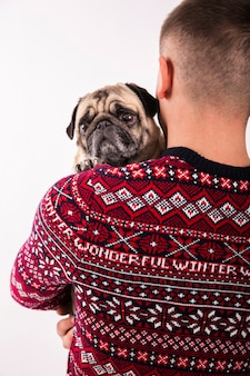 Cute pug held by owner