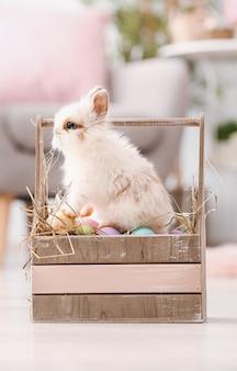 Милый кролик в корзине с пасхальными яйцами на полу в комнате