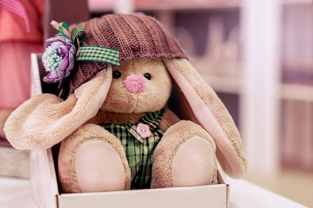 Cute rabbit in a knitted hat is sitting in a gift box