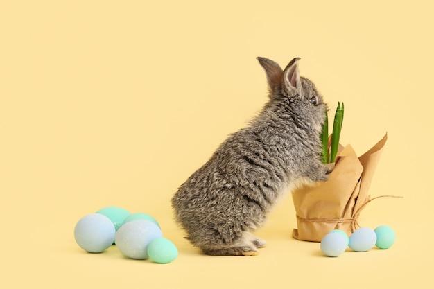 Милый кролик, весеннее растение и пасхальные яйца
