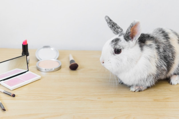 Cute rabbit with cosmetics products on wooden table