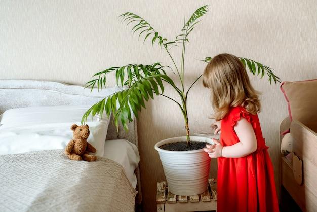 ベッドの近くのベッドで観葉植物に水をまく寝室でかわいい赤い髪の赤ちゃん女の子。エキゾチックな植物の手入れ、家庭菜園
