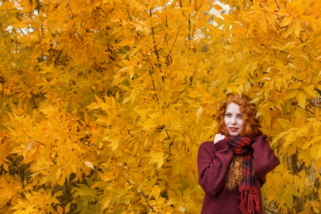 Cute red-haired girl with an autumn tree with a leaf in her hand smiles and grimaces