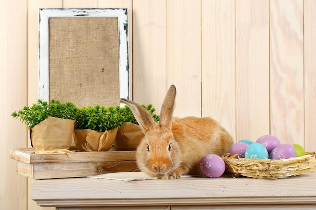 나무 벽에 선반에 부활절 달걀으로 귀여운 빨간 토끼