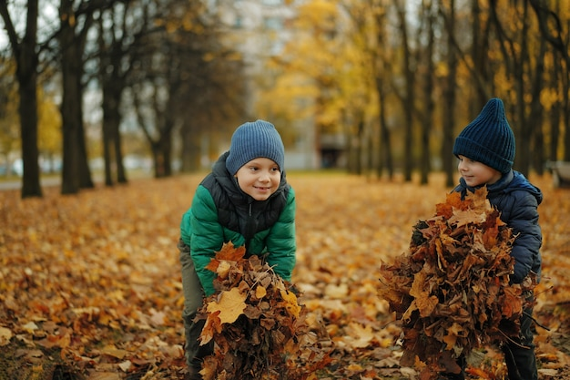 Cute smiling caucasian boys holding heaps of fallen maple leaves going to throw them up