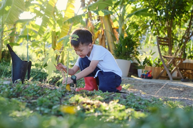 Cute smiling happy boy kid holding small gardening shovel planting young tree on soil at home garden