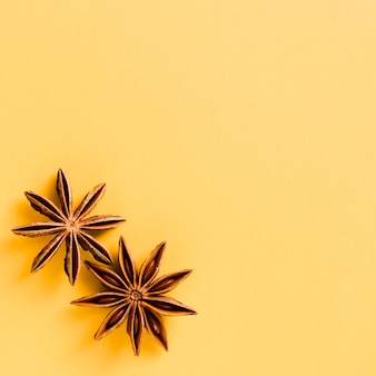 Cute star anise with orange background