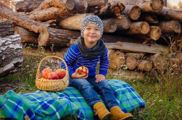 雑多な帽子と青いセーターを着た2年間のかわいいスタイリッシュな男の子が格子縞の上に座って、編まれた木製のバスケットからジューシーな曲がったリンゴを食べる
