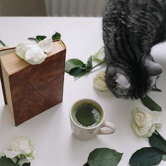 Милый полосатый кот книжка чашка чая и розы на столе смешной кот пахнет цветами дома