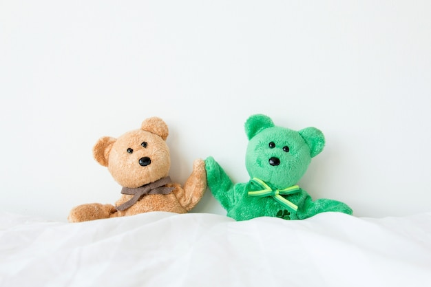 Cute teddy bear couple is sitting that cheerful and happy feel