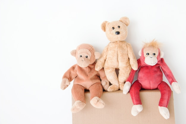 Cute teddy bear and couple monkey are sitting on brown carton box
