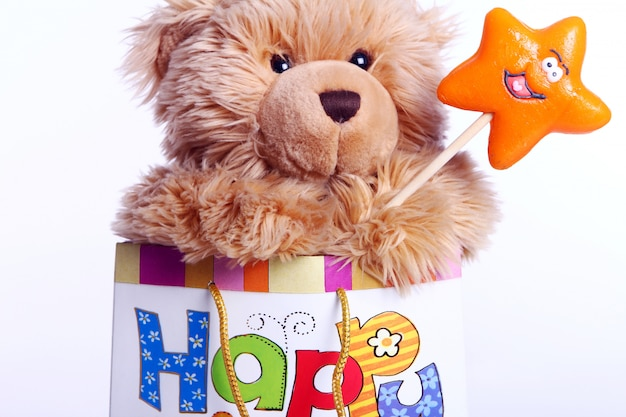 Cute teddy bear in the gift bag