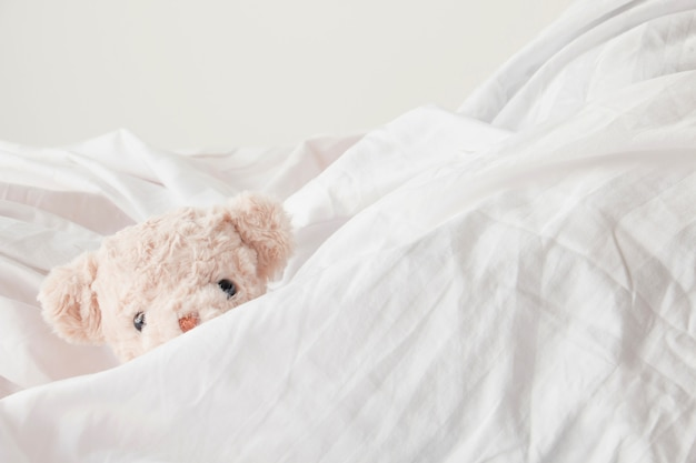 Cute teddy bear play hide and seek with fabric