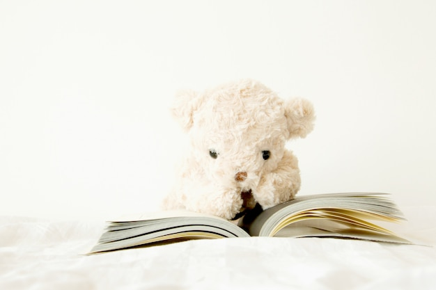 Cute teddy bear with a book that is he have to read for exam