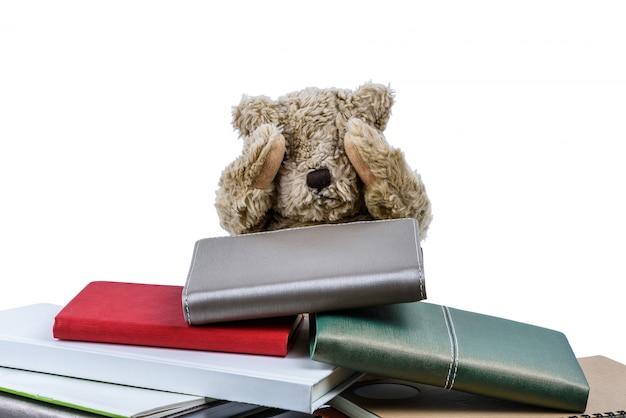 Cute teddy bear with books