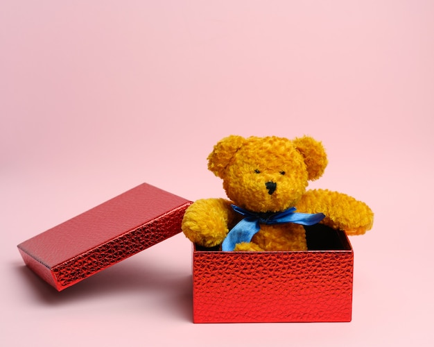 Cute teddy brown bear sitting in a red gift box on a pink wall