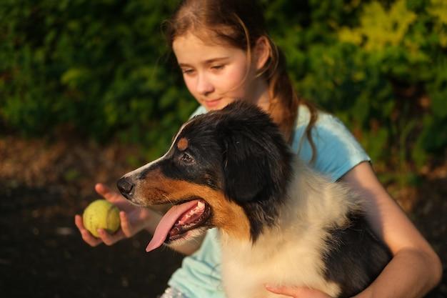 Милая девочка-подросток играет с австралийской овчаркой трех цветов щенка летом с мячом. обучение. наслаждайтесь временем, проводимым вместе. концепция ухода за домашними животными. любовь и дружба между человеком и животным.