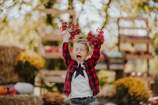 屋外の市場の場所で灰の果実の赤い束を保持しているかわいい幼児の少年。とても幸せ