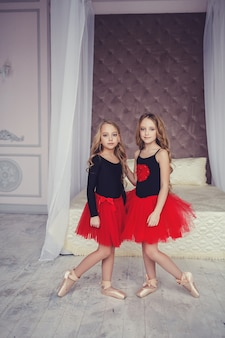 Cute two ballerina sisters