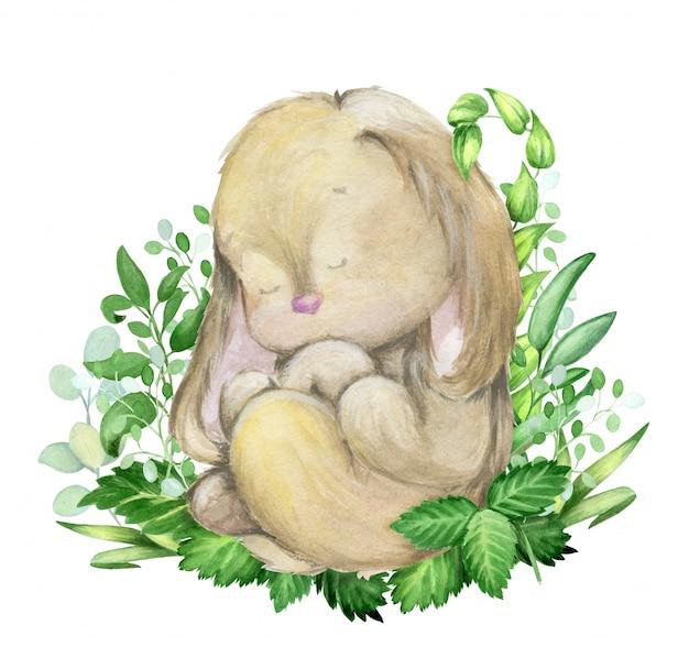 Cute watercolor rabbit sleeping