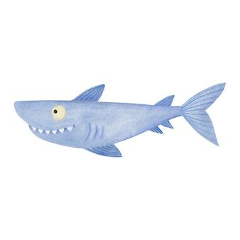 흰색 배경에 고립 된 귀여운 수채화 상어