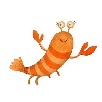 Cute watercolor shrimp isolated on white background