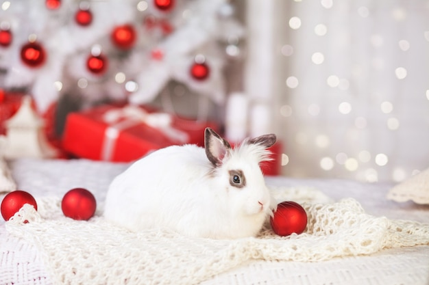 Cute white rabbit with festively decorated fir tree