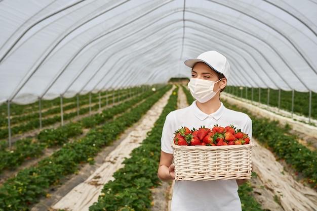 かごにおいしいイチゴを保持しているかわいい女性
