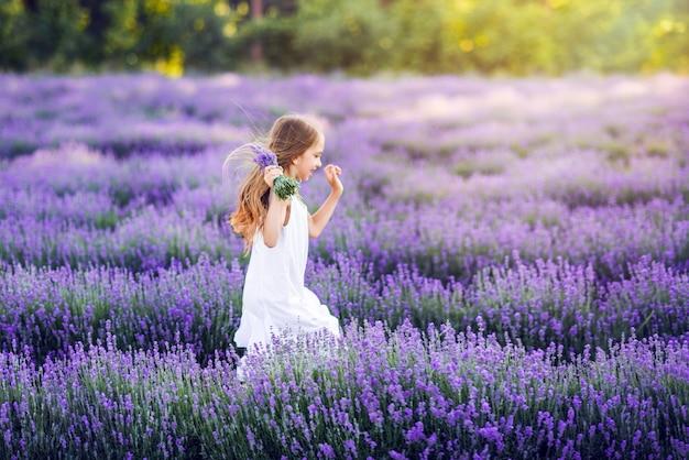 Милая молодая девушка собирает лаванду.
