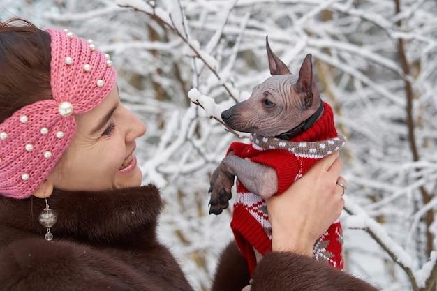 かわいい若い女の子は冬のクリスマスの森でxoloitzcuintli子犬を保持します