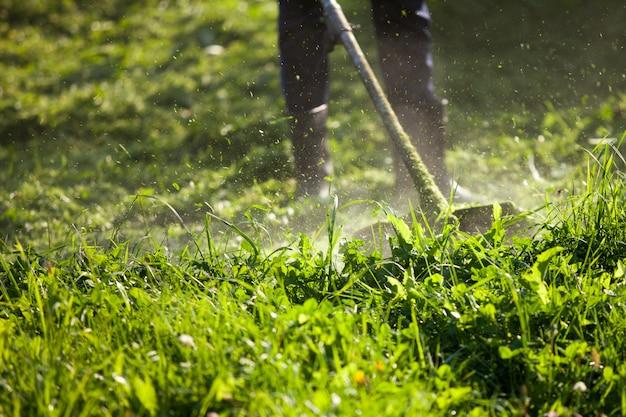 Cutting the grass trimmer