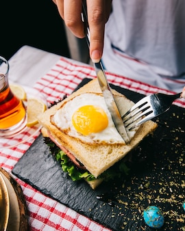 Cutting sandwich with fried egg with knife and fork.