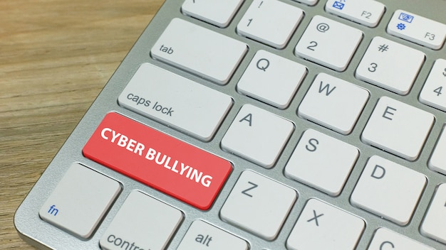 Cyber bullying red button on silver keyboard .