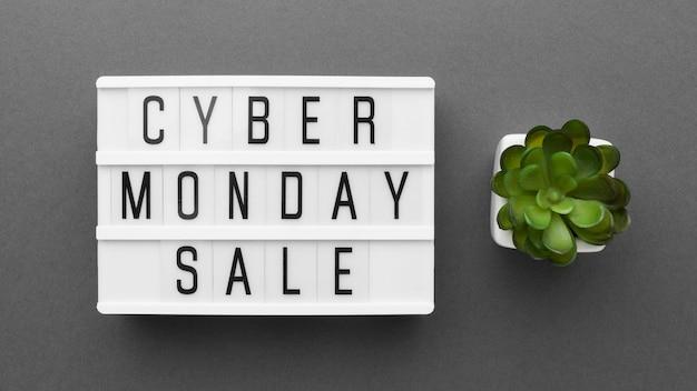 Cyber monday sale succulent plant