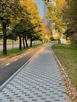 Велосипедная дорожка и тротуар под вечерним осенним солнцем