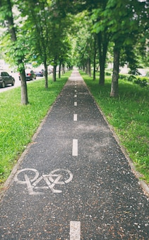 The cycleway between the trees after the rain