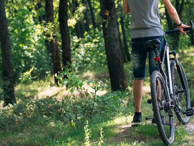 サイクリストとマウンテンバイク。森の中の道路に戻る。背面図