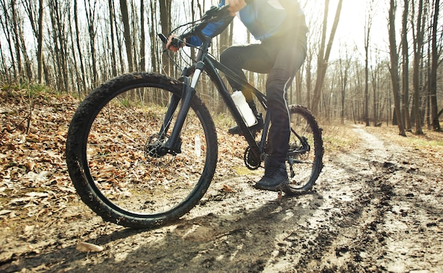 Cyclist is riding on mountain bike on dirt trail in forest in early spring