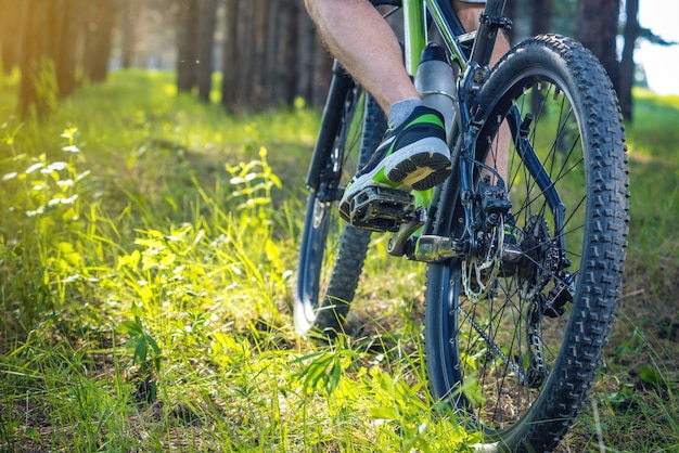 잔디를 타고 숲에서 녹색 산악 자전거에 자전거 타는 사람. 활동적이고 극단적 인 라이프 스타일의 개념