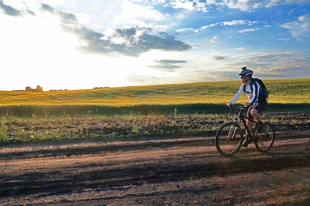 햇빛에 밀밭을 따라 자전거 타기