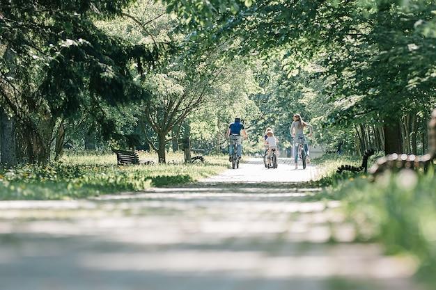 夏の日の公園の道路上のサイクリスト