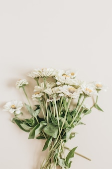 Cynicism flowers bouquet on beige surface