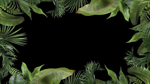 D render frame from tropical plants on a black background
