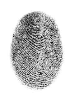 Dactyloscopy personal fingerprint isolated on white background